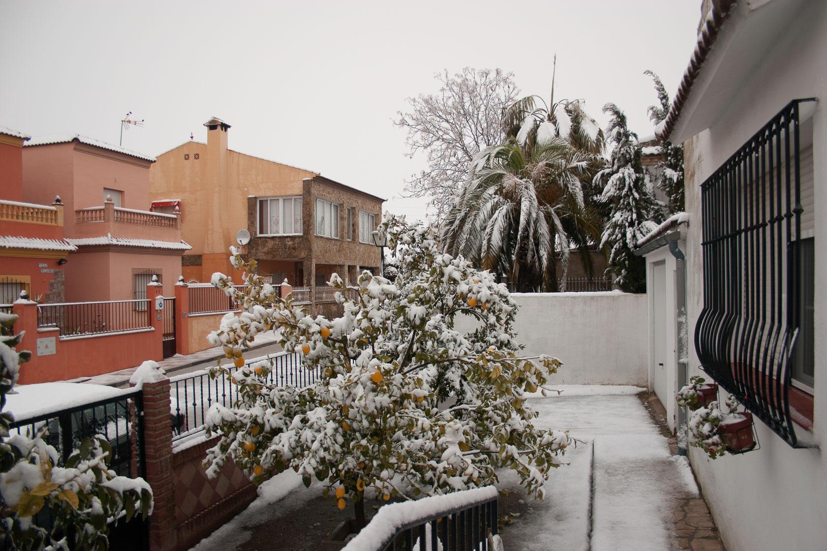 Snow Feb 2013